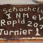 20130209_RapidNM2013 (01)